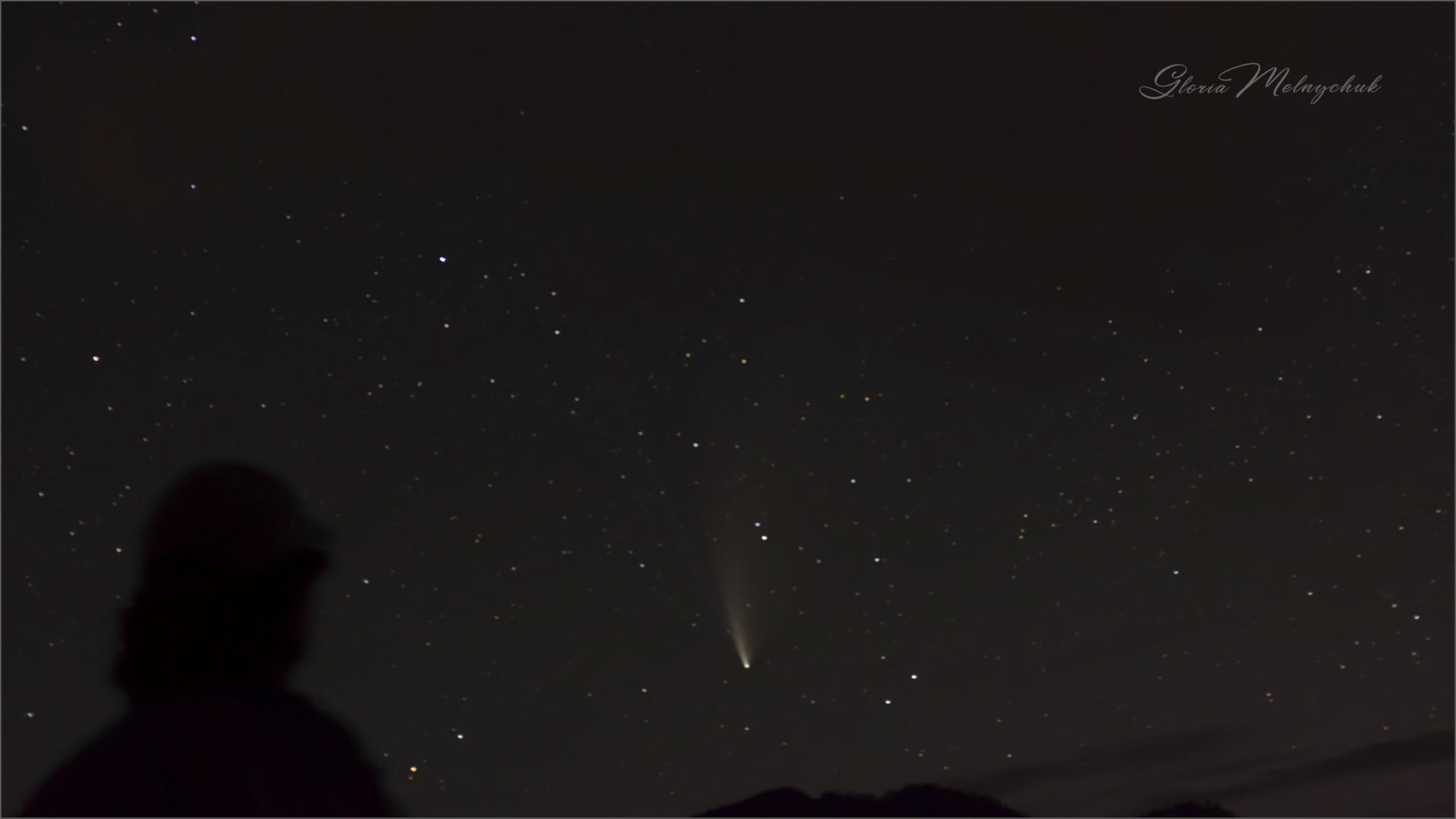 Comet Neowise_WGP4461-270 - Gloria Melnychuk