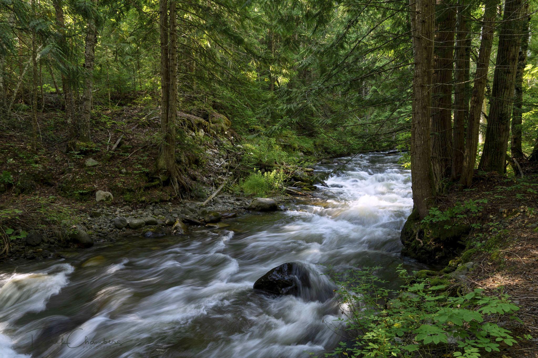 S1405 - Eakin Creek Canyon Park - Derek Chambers
