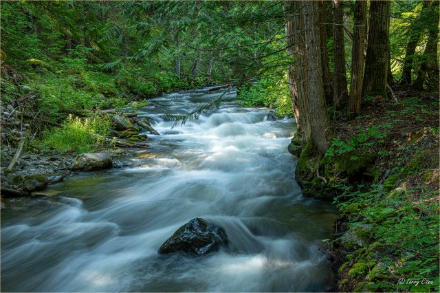 Eakin Creek © Larry Citra