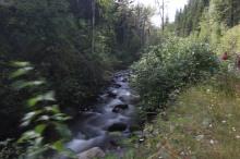 Eakin Creek - 30 seconds worth - Doug Boyce