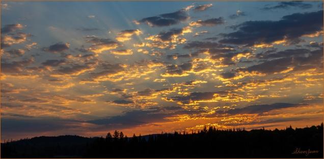 Sun Rays at Sunrise - © Sharon Jensen