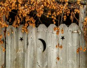The Outhouse Door © Larry Citra
