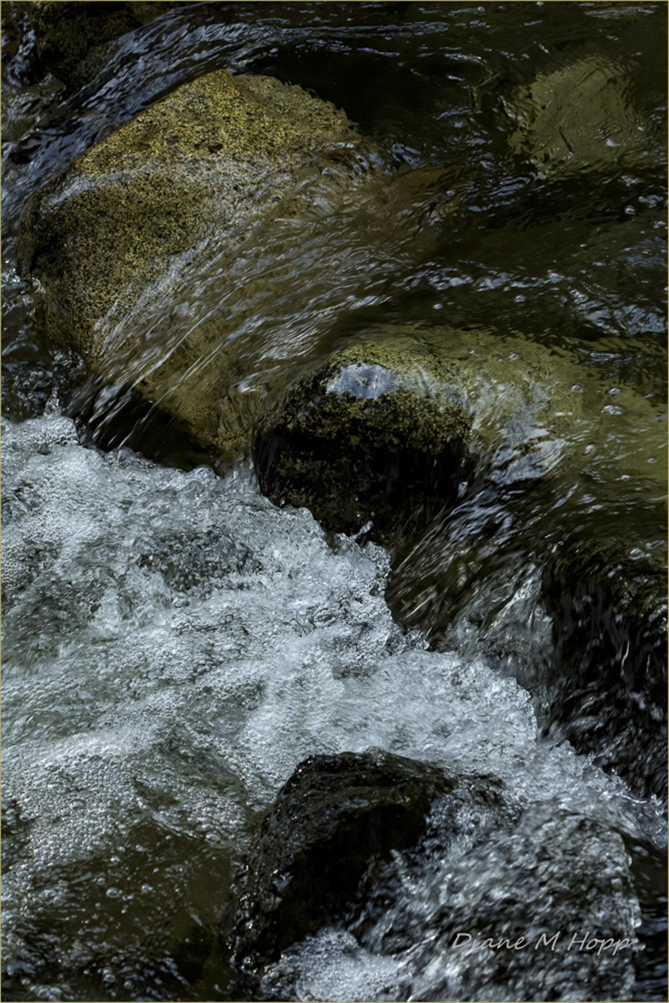 Wet Rocks and Bubbles - DMHopp