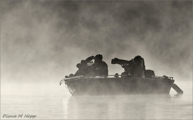 Adrift in the Fog - DMHopp