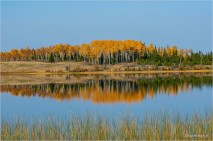 Fall Reflections 3040 - Gloria Melnychuk - Green Lake October 2020