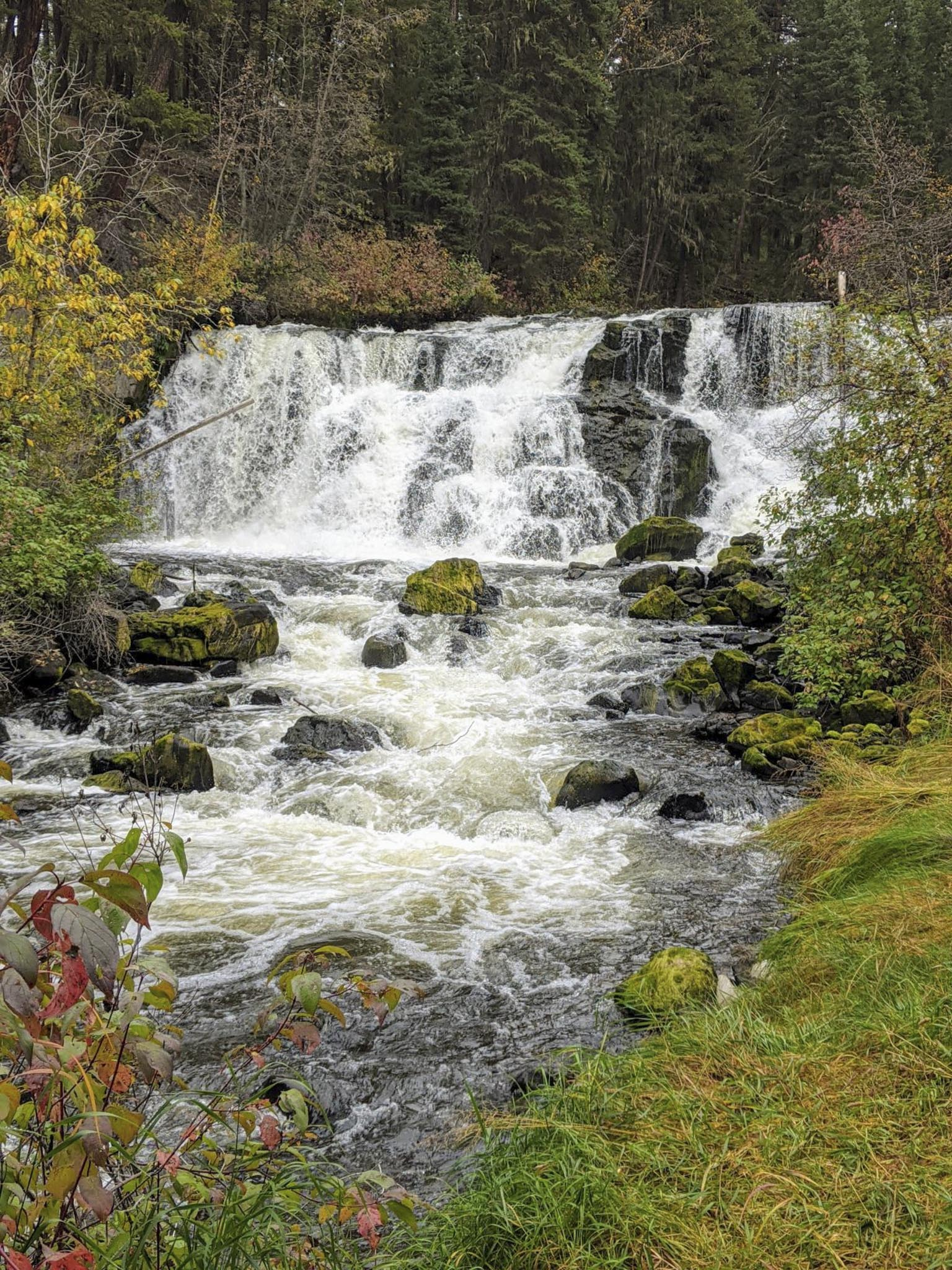 Bridge Creek Falls - Maureen Nelson