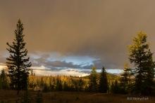 Storm Brewing - Bill Melnychuk