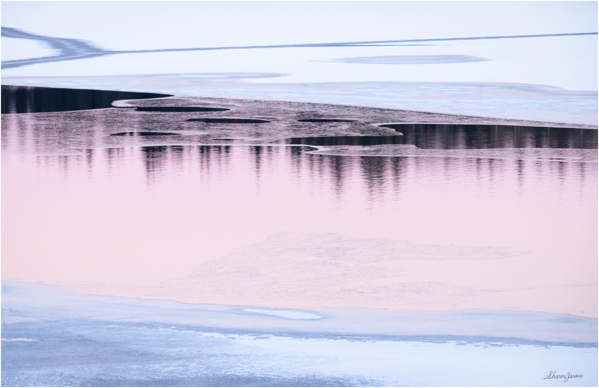 © Sharon Jensen - Pink and Blue