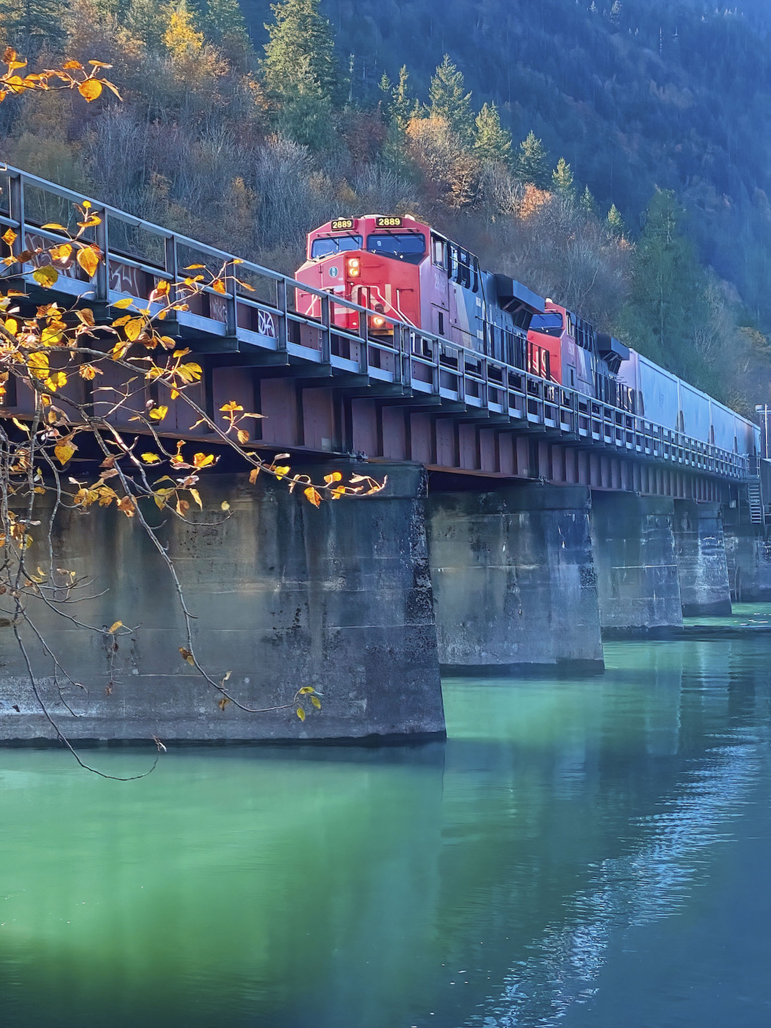 The Train - Carol Jackson