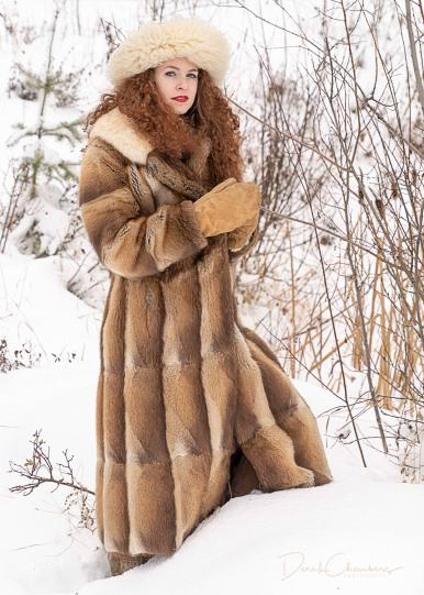 The Snow Queen - Derek Chambers