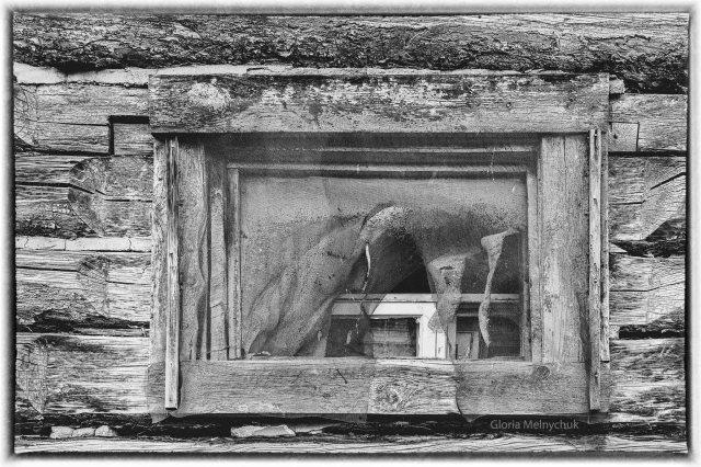 OK Ranch barn window © Gloria Melnychuk