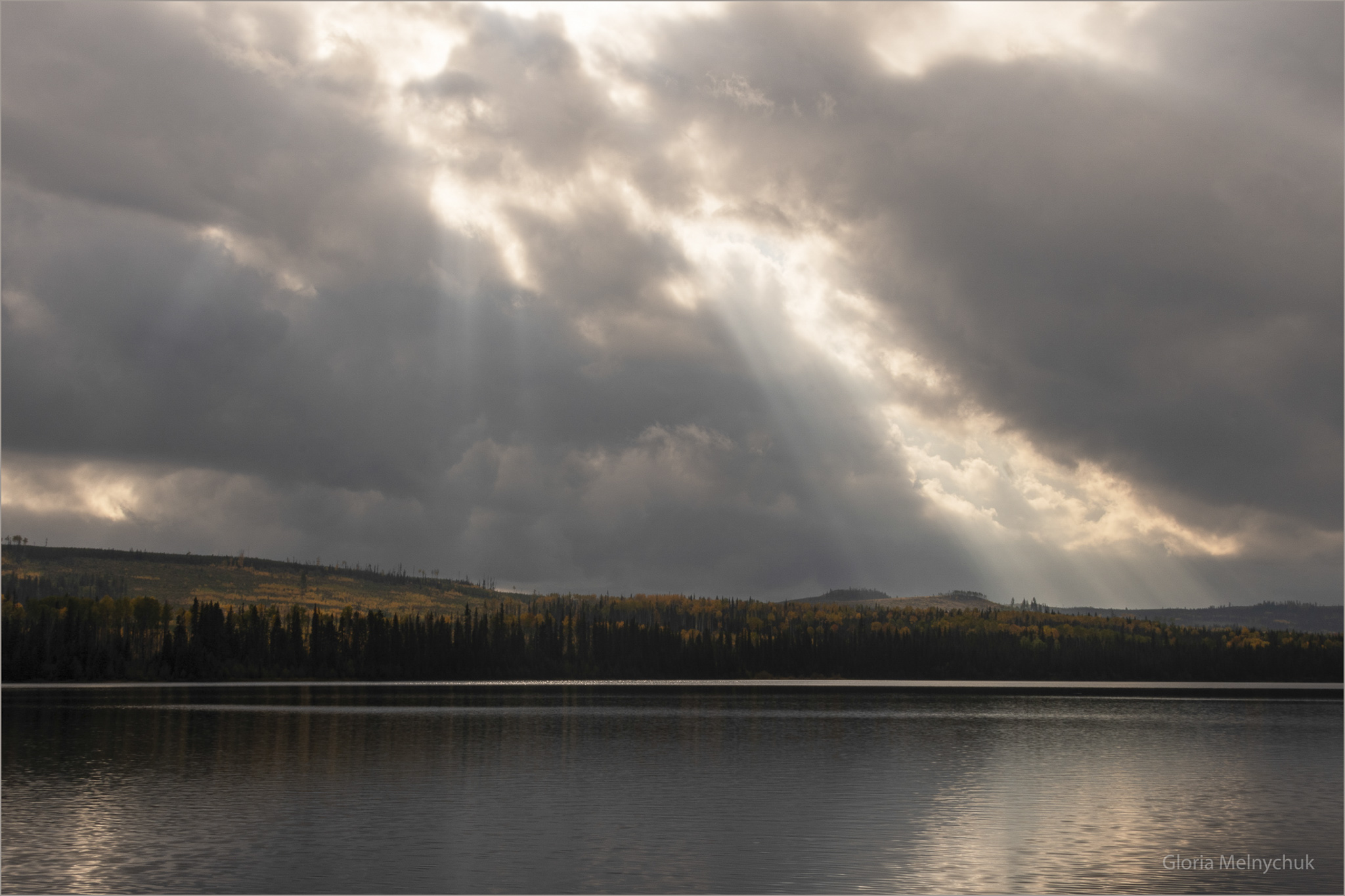 Sun Wants to Shine - Gloria Melnychuk
