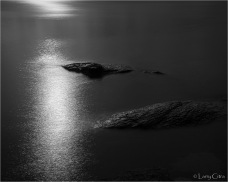 Larry Citra © Sun and the Sea