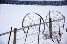 Field Sprinkler Wheels in the Snow - Monika Paterson