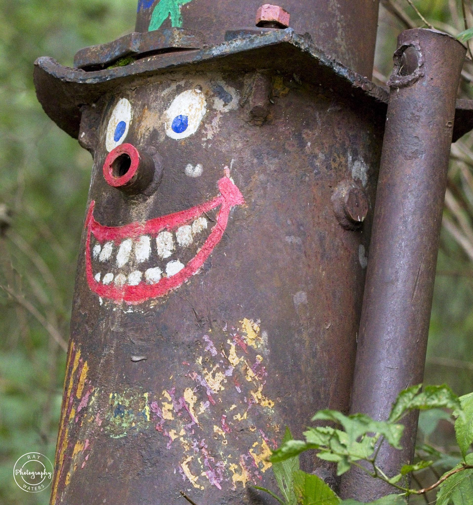 Clowning Around in the Forest - Ray Waters