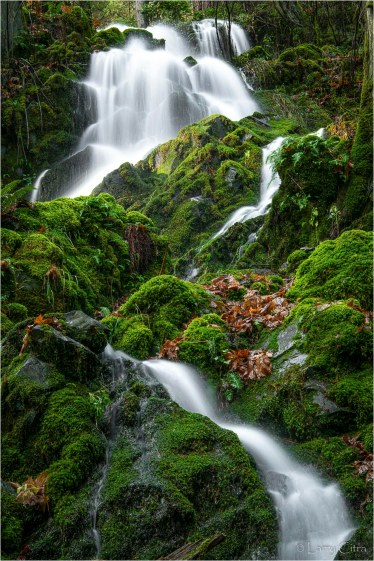 Larry Citra © Mountain Rd Waterfall
