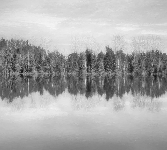CJJ Fern Ridge Pond Impression