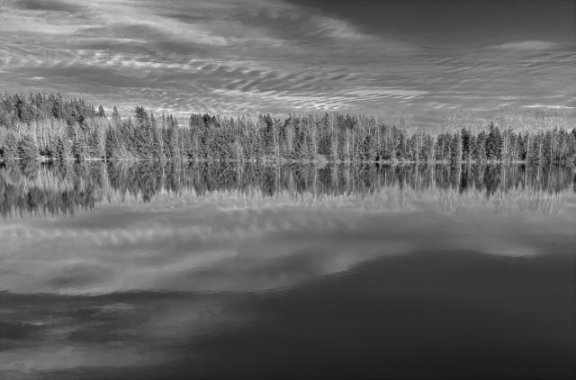 CJJ Reflections on Fern Ridge Pond