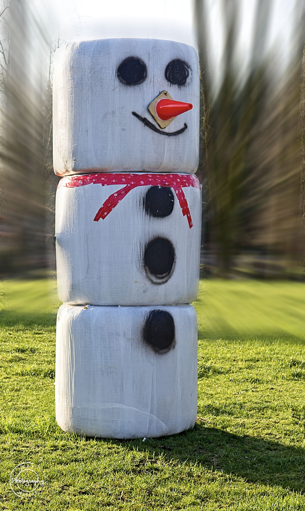 Ray Waters  Incoming - XL Snowman