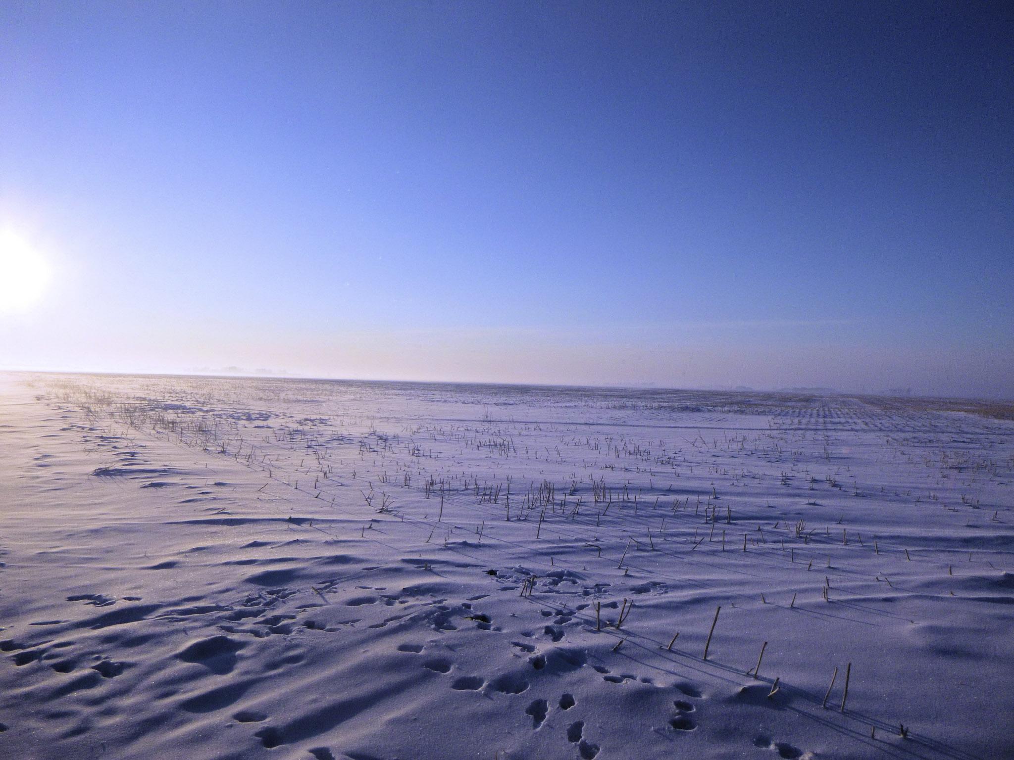 Doug Boyce - Barren Prairie @ Minimalism