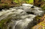 Derek Chambers - Eakin Creek Canyon Park 2019-05-25