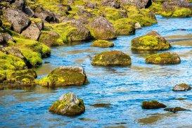 Larry Citra © Skaftarhreppur, Southern Iceland