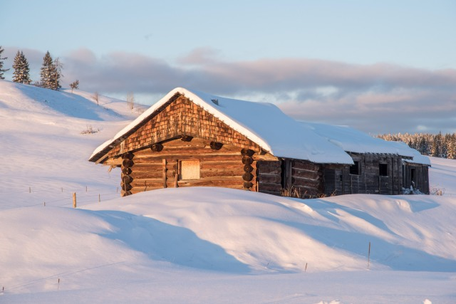 Monika Paterson Cabin in the snow