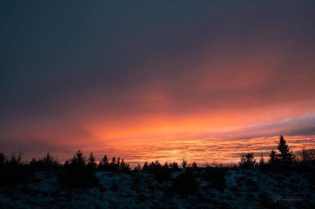 Monika Paterson Sunset rays_MP51492