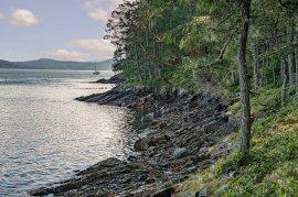 Larry Citra © Yeo Point Shoreline