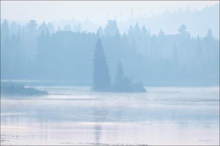 Sharon Jensen - © - Smoke and Mist-Webb Lake