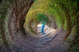 Chris Down the Rabbit Hole © Larry Citra