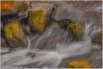 AnnMarie Brown - Flowing Water