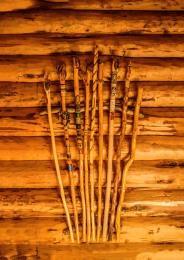 CJJ-Walking Sticks