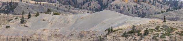 Farwell Canyon - Dune - Diane Hopp
