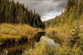 Gary Hardaker- Eakin Creek Meadow