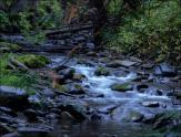 Gary Hardaker- Eakin Creek